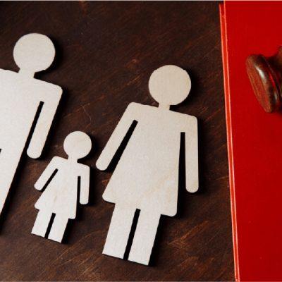 Family Court Support Program